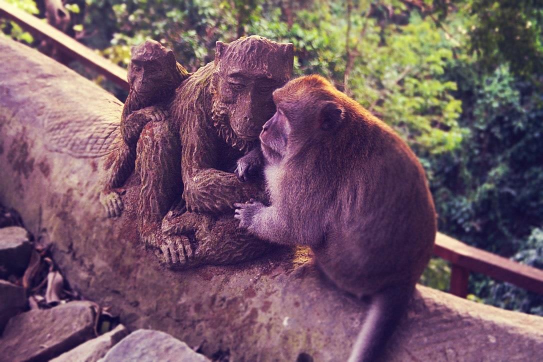 Ubud - Bali - Sudeste Asiático