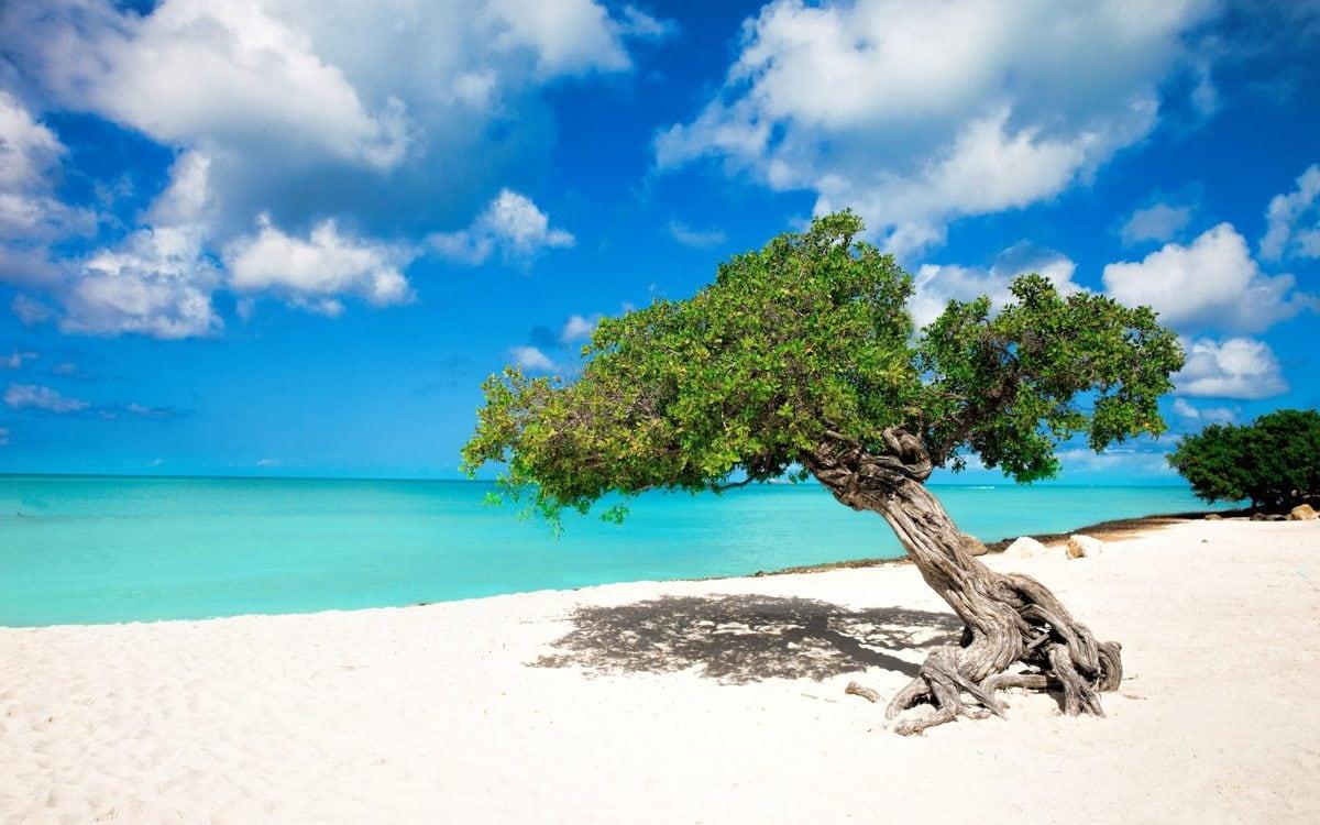 Melhores destinos de praia | Eagle Beach