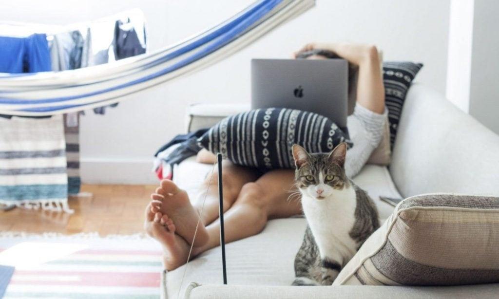 Housesitting | viajar com pouco dinheiro