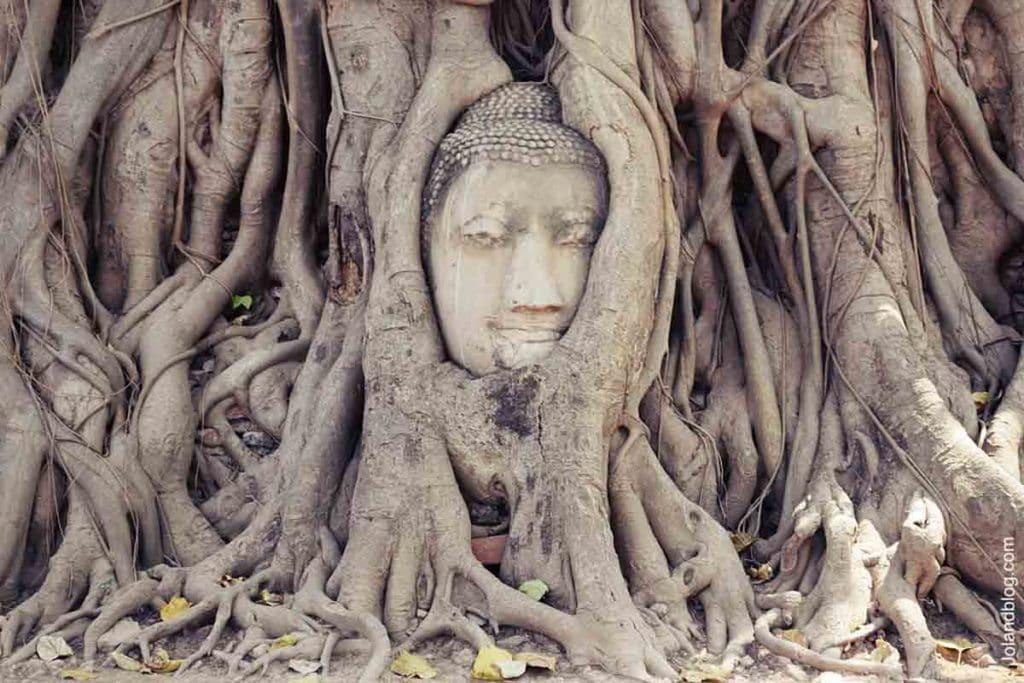 tailândia - sudeste asiático - ayutthaya