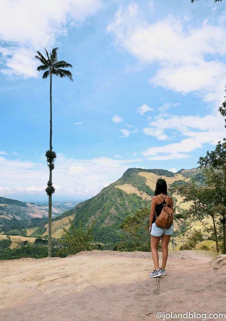 Vista sobre o Valle de Cocora