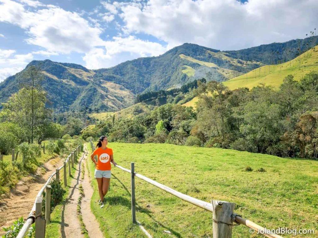 Paisagem Valle de Cocora na Colômbia