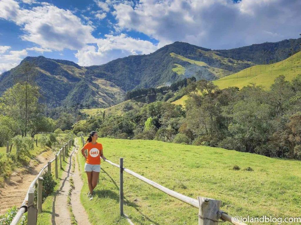 Paisagem no Valle de Cocora - o que ver e fazer na Colômbia
