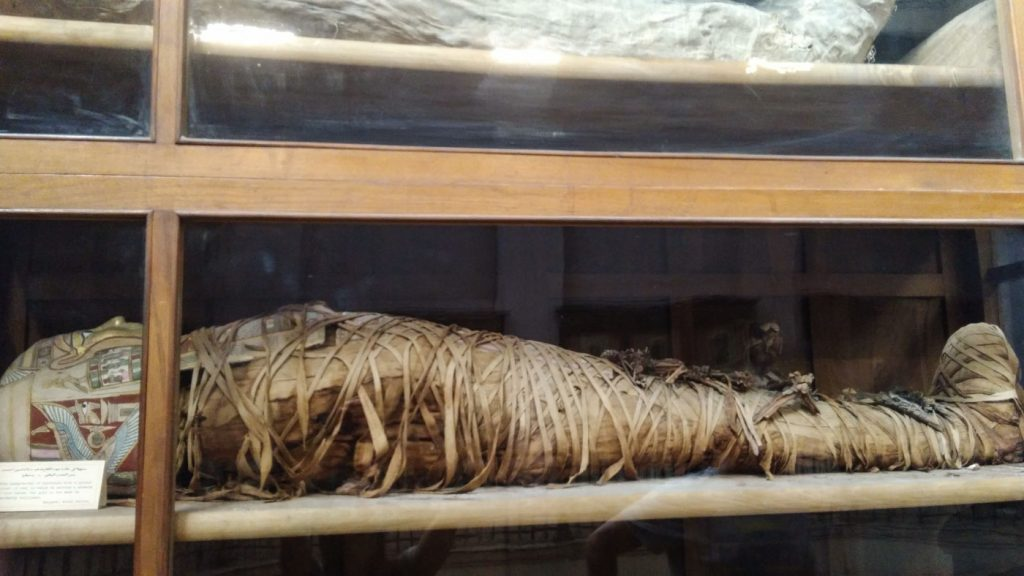 Mumias no Museu no Cairo