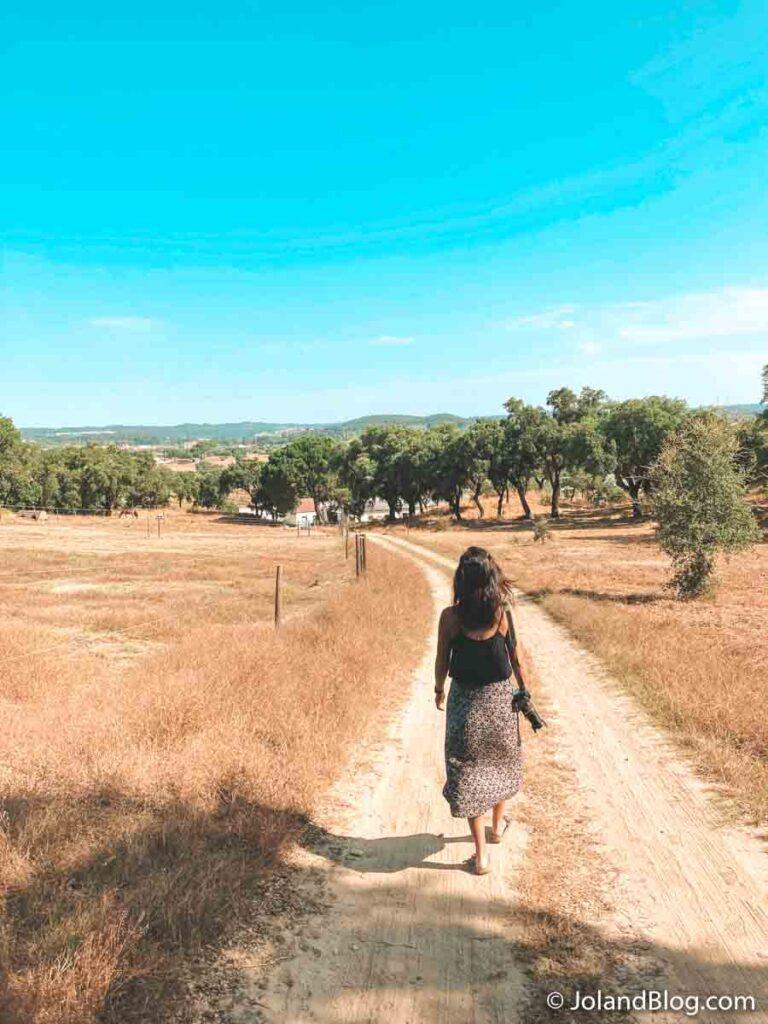 Vale de Ferreiros no Pego