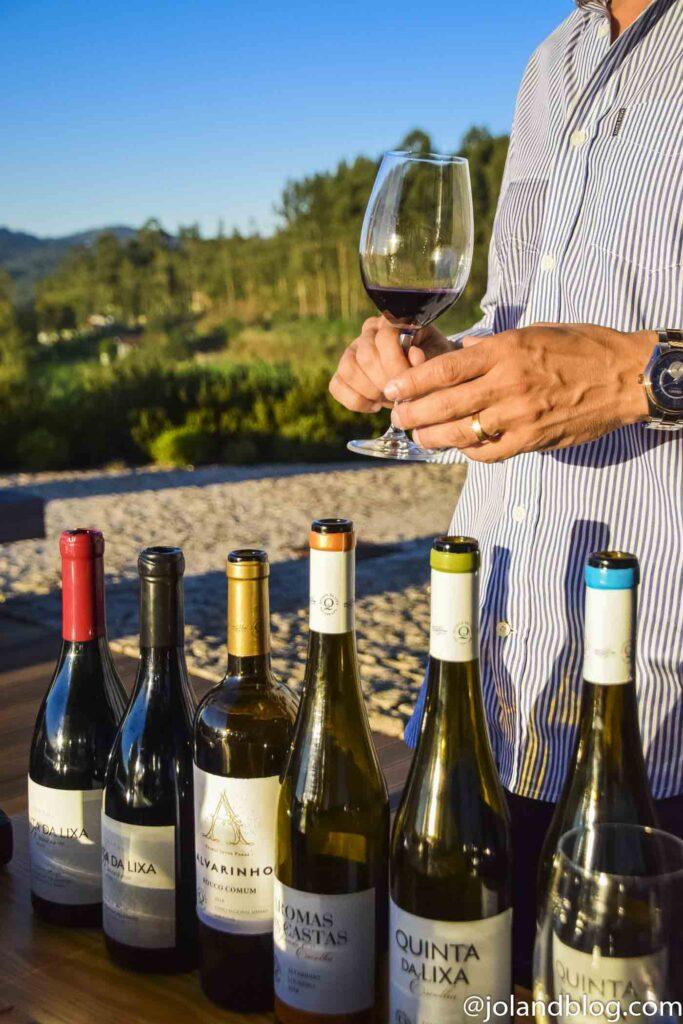 Monverde Wine Hotel | Escapadinhas no Norte e Centro de Portugal