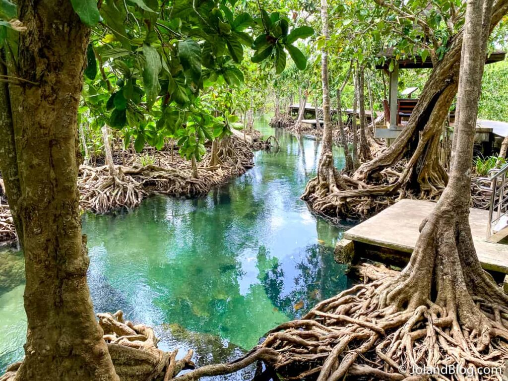 Parque Natural Tha Pom Khlong Song Nam em Krabi - Roteiro de Viagem pelo Sul da Tailândia