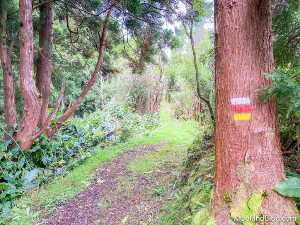 Trilho do Pico Alto, Ilha de Santa Maria, Açores